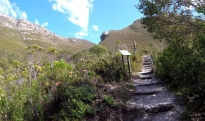 Starting out to the Fernkloof waterfall.