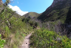 Walking up to the waterfall in Fernkloof Nature Reserve, Hermanus