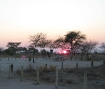 Etosha Nature Reserve, by Morag Noffke.