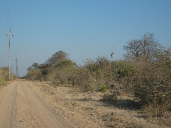 Back on dust roads, into the bush. Photo by Morag Noffke.